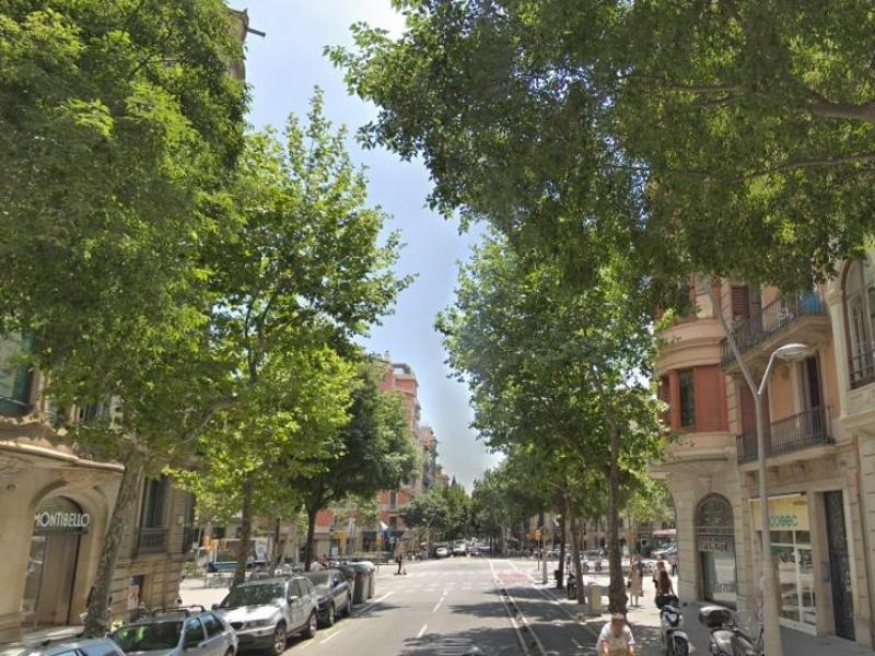Suspensió de llicències de bars, restaurants i locals d'oci al carrer Girona