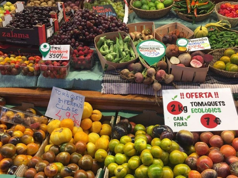 Verdures i Fruits Molins (3)